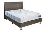 Comforta Perfect Pedic Divan NYC + Sandaran NYC