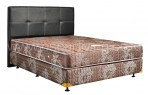 Uniland Standard Coklat Divan Standard Sandaran Eelegance